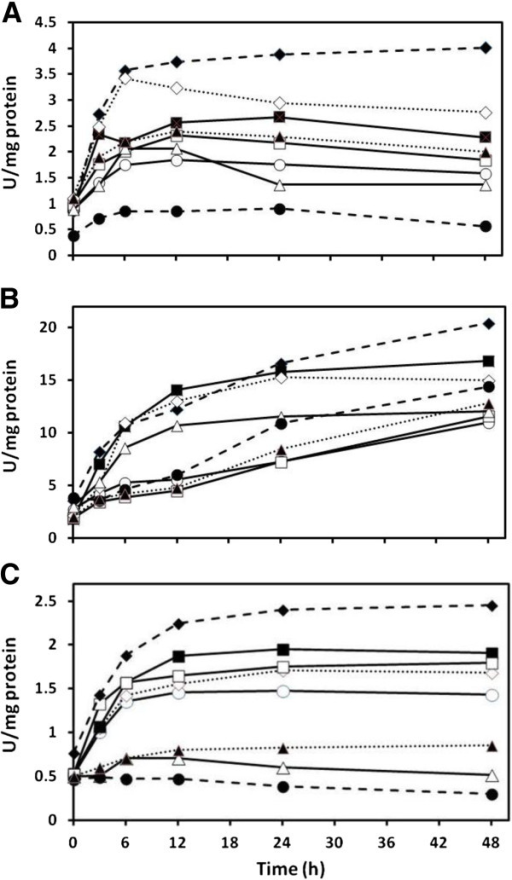 Effect of cadmium on coupled serine acetyl-transferase and O-acetylserine(thiol)lyase activity in Chlamydomonas reinhardtii (A), Cyanidioschyzon merolae (B), and Synechococcus leopoliensis (C) exposed to 100, 100, and 2 μM Cd(II), respectively, when supplemented with sulfur containing compounds. No added Cd(II) (), Cd(II) alone (), and Cd(II) with the following additions; sulfate (), prefed sulfate plus sulfate (), sulfite (), prefed sulfite plus sulfite (), cysteine (), and prefed cysteine plus cysteine (). Means are presented (n = 4). SE always less than 6%.
