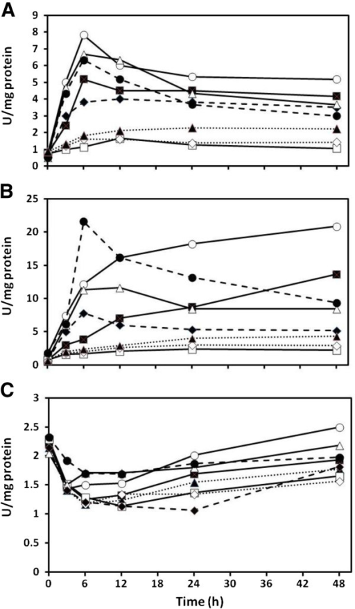 Effect of cadmium on cysteine desulfhydrase activity in Chlamydomonas reinhardtii (A), Cyanidioschyzon merolae (B), and Synechococcus leopoliensis (C) exposed to 100, 100, and 2 μM Cd(II), respectively, when supplemented with sulfur containing compounds. No added Cd(II) (), Cd(II) alone (), and Cd(II) with the following additions; sulfate (), prefed sulfate plus sulfate (), sulfite (), prefed sulfite plus sulfite (), cysteine (), and prefed cysteine plus cysteine (). Means are presented (n = 4). SE always less than 7%.