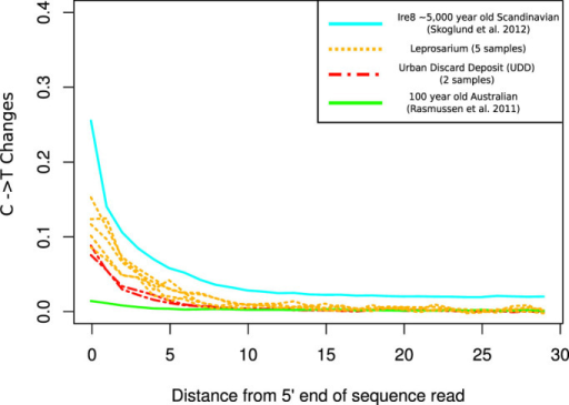 Comparison of Cytosine Deamination patterns in the 5′ end of sequencing reads between the samples from the Leprosarium (yellow dotted lines) and UDD (red dotted lines) burial sites with a ~5,000 year old Scandinavian hunter-gatherer and a 100 year old Australian Aboriginal.The range of C to T changes suggest the authenticity of the data.