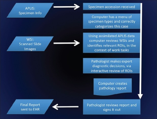 High level flow diagram of pathologists' computer assisted diagnosis (pCAD). After a specimen is accessioned, the pCAD system reviews the specimen information from the Anatomic Pathology Laboratory Information System (APLIS) in order to classify the specimen into one or more predetermined templates (e.g., sentinel lymph node biopsy, benign supracervical hysterectomy, etc.). Once a template workflow has been selected, the pCAD assimilates both APLIS data and whole slide images. In the context of predefined work tasks, clinically relevant regions of interests (ROIs) are identified and triaged. Together, a pathologist and pCAD review the ROIs interactively; as they work through the case, a pathology report is automatically constructed by pCAD. When the case work is completed, the pathologist reviews the pathology report then releases it