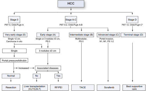 The Barcelona Clinic Liver Cancer (BCLC) staging system for hepatocellular carcinoma, revised 2011. PST performance status; CLT/LDLT cadaver liver transplant/living donor liver transplant; RF/PEI radiofrequency ablation/percutaneous ethanol injection; TACE transarterial chemoembolization[29].
