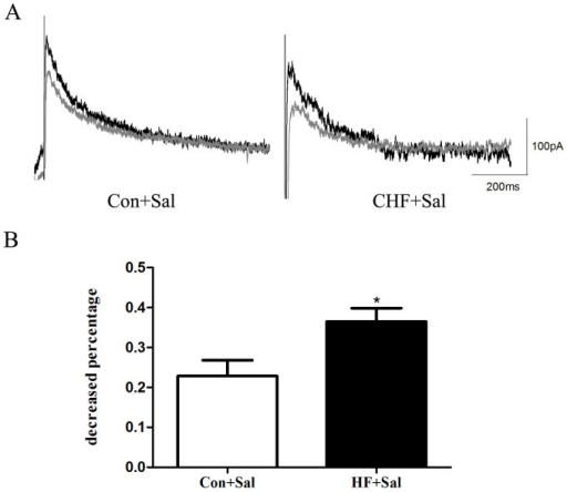 Effects of β2-AR stimulation on Ikr in myocytes from isolated failing heart.(A) Representative tail traces of IKr inhibited by salbutamol (Sal) in LV myocytes isolated from control (Con, left) and HF guinea pigs (HF, right). (B) Summarized data from decreased percentage of Ikr in control () and HF () myocytes (*p < 0.05, HF vs. Con, n = 6 cells, 6 hearts).