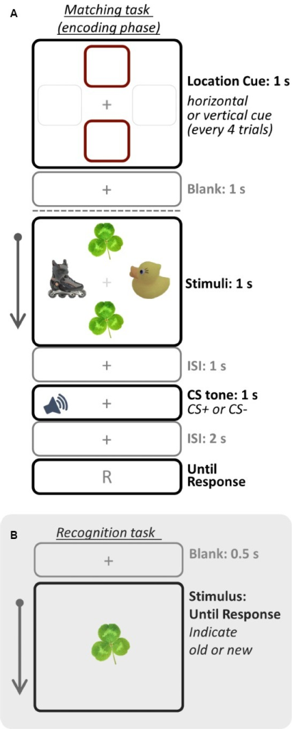 Schematic illustration of one trial for the (A) matching task (encoding phase) and (B) recognition task (test phase). In Study 1, participants were asked to remember only objects in the cued location whereas in Study 2 they were asked to remember all objects. Therefore, only objects in the cued location were top-down prioritized in Study 1, but all objects were prioritized in Study 2. The recognition task was administered right after the matching task session. Images were drawn not to scale.