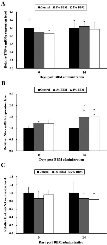 The effects of the BBM on the relative mRNA expression levels of TNF-α, IFN-γ andIL-4 in normal pigs. The mRNA expression levels of (A) TNF-α, (B) IFN-γ and (C) IL-4from the peripheral blood were measured through quantitative real-time PCR andnormalized to that of β-actin. The BBM group shows a significant increase in the IFN-γlevel. The data are presented as the mean ± SD of 5 pigs per group.*P<0.05 vs. control group.