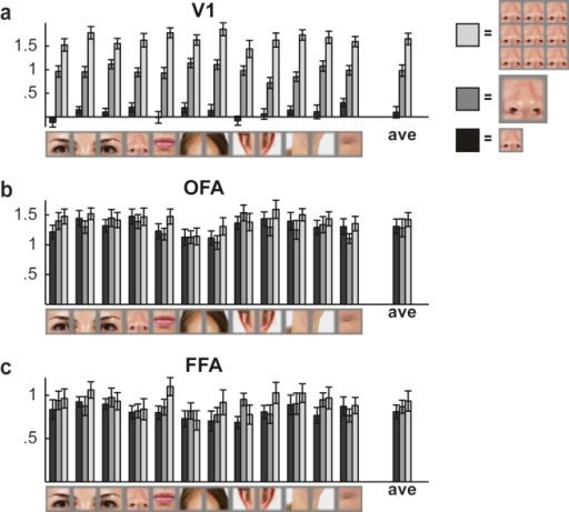 Mean responses to different face-feature stimuli. Mean responses for the 12 different face-feature stimuli are shown separately for the three different conditions (black = 1 small feature, gray = 1 large feature, light gray = 9 parallel features) in (a) V1, (b) OFA, and (c) FFA. The error-bars indicate SEMs across the 12 subjects.