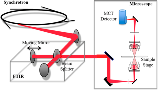 Optical layout of the microspectroscopic station at BL43IR.The infrared synchrotron light is injected into the FTIR (BRUKER VERTEX70) interferometer, and the light then goes to the microscope (BRUKER HYPERION2000). Infrared light transmitted through a sample is detected by an MCT (HgCdTe) detector.