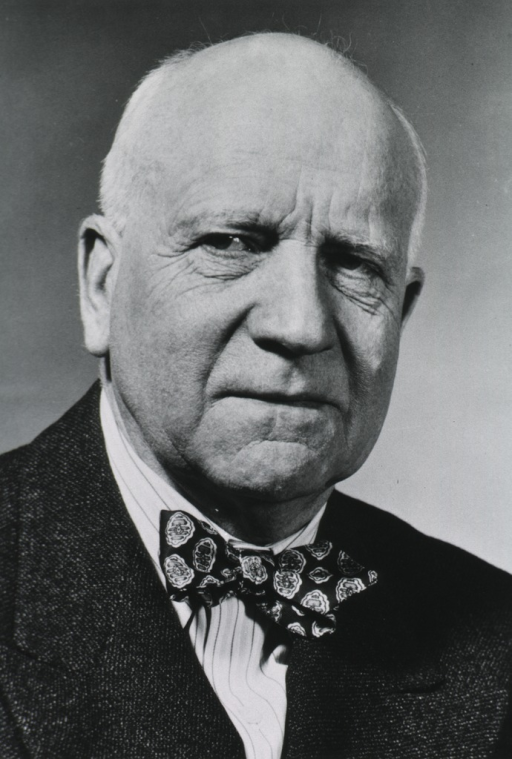 <p>Head and shoulders, full face, wearing suit and bow tie.</p>