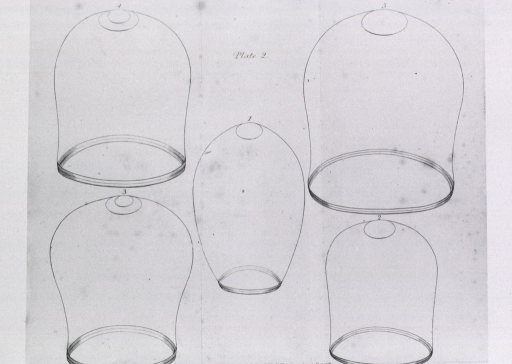 <p>Five cupping bells in various sizes and shapes.</p>