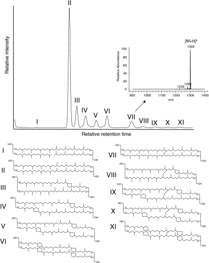 "HPLC/APCI/MS base peak chromatogram of GDGT core lipids in extract released after base hydrolysis (using KOH/methanol mixture) of the cell material of Candidatus ""Aciduliprofundum boonei"". Inset shows the atmospheric pressure chemical ionization mass spectrum of GDGT VII. Note that the position of the covalent bond between the isoprenoid hydrocarbon chains in GDGTs VII–XI is tentative (Morii et al. 1998)"