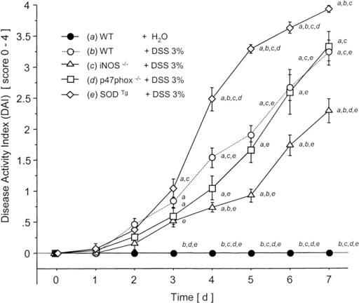 Clinical score (DAI) over 7 d after water in WT or DSS oral treatment in WT, iNOS−/−, p47phox−/−, and SODTg mice (n = 9/group). a versus WT plus water; b versus WT plus DSS; c versus iNOS−/− plus DSS; d versus p47phox−/−; and e versus SODTg plus DSS. Mean ± SEM. P < 0.05.