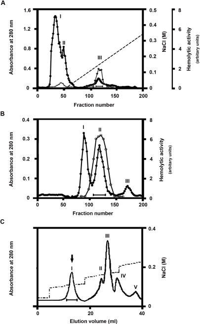 "Purification of βγ-CAT.(A) Lyophilized frog B. maxima skin secretions (5.0 g, containing 550 mg proteins, from a stock in Kunming Institute of Zoology) was dissolved in 10 ml 50 mM Tris-HCl buffer, pH 7.3, containing 5 mM EDTA, dialyzed against the same buffer at 4°C overnight and centrifuged. The supernatant was loaded on a DEAE Sephadex A-50 (Pharmacia) column (2.6×50 cm). The elution was performed at a flow rate of 30 ml/h with a linear NaCl gradient, collecting fractions of 5 ml per tube. Hemolytic activity was mainly found in NaCl-eluted peak III. This peak was collected as indicated by a bar. (B) The peak III from DEAE Sephadex A-50 column was concentrated, then applied on a Sephadex G-100 (Pharmacia, superfine) column (2.6×100 cm) equilibrated with 50 mM Tris-HCl buffer, pH 7.8, containing 150 mM NaCl and 5 mM EDTA. Elution was achieved with the same buffer at a flow rate of 12 ml/h, collecting fractions of 2 ml per tube. The hemolytic activity was found in peak II. In A and B, The protein concentration was estimated from the absorbance at 280 nm (•). The hemolytic activity on human erythrocytes (○) was determined as described in ""Methods"". (C) The peak II of Sephadex G-100 column was lyophilized and dialyzed against 25 mM Tris-HCl, pH 7.8, for 24 h at 4°C, and finally applied on an AKTA Mono-Q HR5/5 anion ion exchange column equilibrated with the same buffer. Elution was performed at a flow rate of 1.0 ml/min with the NaCl gradient, as shown in the figure. Hemolytic activity was found in peaks I, II and III. Peak I is highly purified βγ-CAT, as indicated by an arrow."