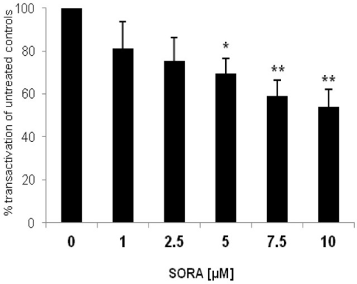 Sorafenib inhibits ARQ640X-signalling in PC-3 cells. AR negative PC-3 cells were cotransfected with an ARQ640X construct (AR with point mutation in the hinge region, 640 amino acids) together with an ARE(2x)-reporter plasmid. pRL-tk-LUC was co-transfected as an internal control for transfection efficiency. Reportergene activity after sorafenib treatment (SORA) was measured using a Dual-Luciferase Reporter Assay as recently described [17]. Results are expressed in percent transactivation of untreated controls which were set at 100%; *p < 0.05; **p < 0.01.