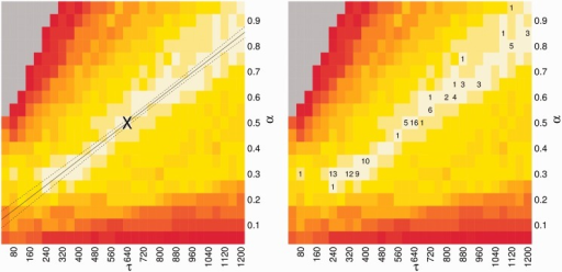 Training of parameters in CoFold: linear fit and robustness. Left figure, heat-map showing the average MCC differences w.r.t. RNAfold as function of the  (x-axis) and  (y-axis) parameters values. The average MCC differences are indicated via the colours from high (bright yellow) to low (dark red), see Supplementary Figure S3 for details. The solid line corresponds to the linear regression line ( with a slope of  and an intercept of ). The two dotted lines delineate the 95% confidence region. The asterisk shows parameter pair with highest average MCC ( and ), which is the parameter combination used in CoFold and CoFold-A. Right figure, same heat-map as in left figure, but this time showing the count of trials in 20 trials of 5-fold cross-validation where that the corresponding pair of parameter values has the highest average MCC for the set of training sequences.