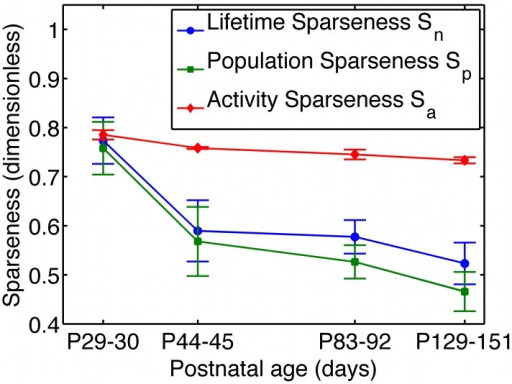 V1 developmental data appear to challenge the canonical sparse coding models.Multi-unit activity in primary visual cortex (V1) of awake young ferrets watching natural movies shows decreasing sparseness over time. The sparseness metrics shown in this figure are defined in the results section of this paper, and the data are courtesy of Pietro Berkes [14], [15]. The plot has a logarithmic horizontal axis. For contrast, one expects that, in sparse coding models, the sparseness should increase over time. This point was emphasized in recent work [14]. In this paper, we show that, in sparse coding models sparseness can actually decrease during the learning process, so the data shown here cannot rule out sparse coding as a theory of sensory coding.