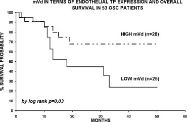 MVD positive to TP and overall survival curves in 53 oropharyngeal squamous cell carcinoma. At a median follow-up of 19 months, patients with high MVD tumours showed a better survival rate as compared to those with low MVD (75% and 45%, respectively).