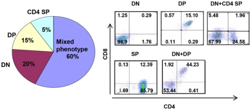 Immunophenotype of TLX1-induced T-ALL.Immunophenotype distribution showing heterogeneous expression of CD44, CD25, CD4 and CD8 in IgHµ-TLX1TgPrkdcScid/Scid T-ALL. Representative flow diagrams showing heterogeneous expression of CD4 and CD8 in TLX1-initiated leukemia are presented.