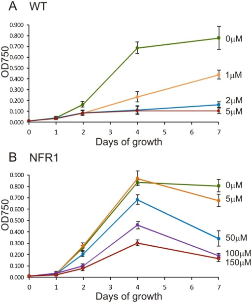 The influence of increasing norflurazon concentration on growth of C. reinhardtii.Cultures were inoculated to a density of 1×105 cells/ml on day 0 and optical density at 750 nm used to estimate cell density. (A) WT progenitor PDS1 strain. (B) NFR1 mutant pds1-nfr1d strain. The mean values of three experiments were plotted. Standard error bars are shown.