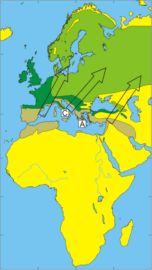 Illustration of the wintering and breeding areas and migration directions of five bird species. Breeding (green) and wintering (light brown) areas for some bird species included in the study, based on Cramp and Perrins [36-38]. Dark green indicates areas where birds are present all year around. Arrows show the main direction of movements from wintering areas towards breeding areas during spring migration.Song Thrush Turdus philomelos. The locations of Capri (C) and Antikythira (A) bird observatories in Italy and Greece, respectively, are shown by white squares.