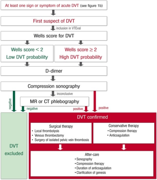 Standard operating procedure (SOP) and risk-adjusted therapeutic strategies in acute deep vein thrombosis. DVT, deep vein thrombosis.
