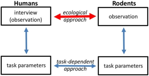 Different approaches can be used to translate human symptoms into animal behavior readouts, and vice versa. One approach (task-dependent) is to assess behavior at the level of discrete task performance. The ecological approach aims to link human psychopathological assessment with observation of spontaneous animal behavior.