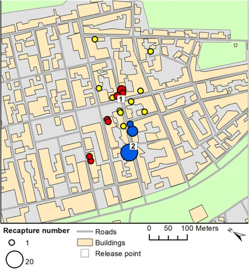 Recaptures for three MRR experiments at the field site in Brazil.Numbered squares represent the two release points for MRR experiments. Coloured circles indicate the location and size of recaptures for three separate MRR releases (insects marked with red, yellow and blue fluorescent powder).