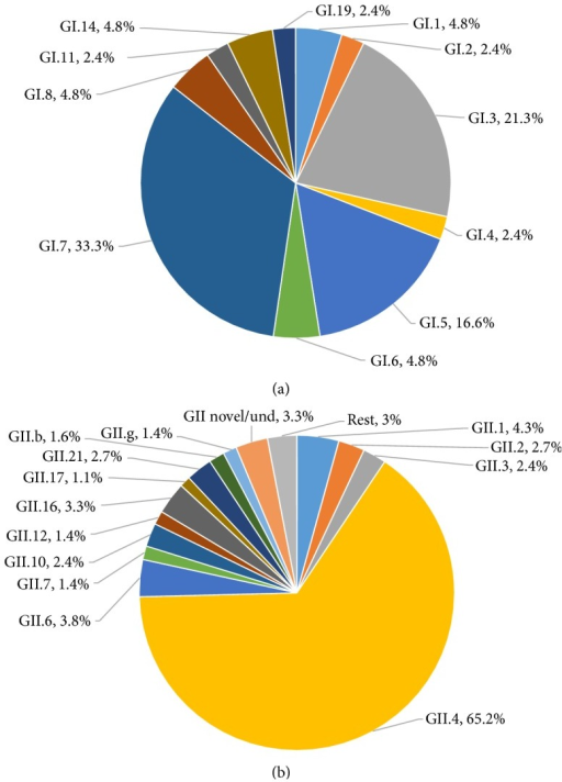 Distribution of GI and GII norovirus genotypes (capsid and polymerase combined) in Sub-Saharan Africa. (a) Relative frequencies of GI genotypes among a total of 42 GI norovirus positive samples from nine studies. GI.7 and GI.3 norovirus infections were more common than any other GI genotype. (b) Relative frequencies of GII genotypes among a total of 368 GII norovirus positive samples from nine studies. GII.4 (65.2%) was the most prevalent genotype. Und: undefined. Rest: GII.e, GII.8, GII.11, GII.13, GII.14, and GII.15.