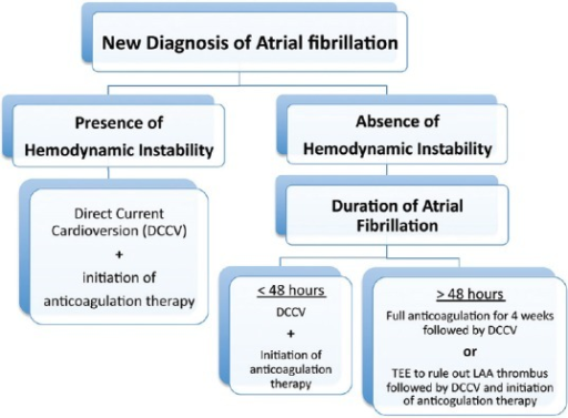 Acute Management of new onset atrial fibrillation (LAA: Left atrial appendage; Full anticoagulation: either with 4 consecutive weeks of warfarin therapy with weekly therapeutic INR (2-3) or four weeks of the novel oral anticoagulants (NOACs) without any interruption even for one dose