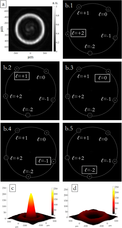 (a) Measured intensity of the incident perfect vortex, in the specific case with ℓ = −2, on a plane perpendicular to the propagation direction. (b.1–5) Experimental far-field on the CCD camera of a DOE performing OAM-MDM in the range {−2, −1, 0, +1, +2}, according to the scheme in Fig. 2. The far-field exhibits a bright spot in correspondence of the corresponding input OAM (c), otherwise no peak is present (d).