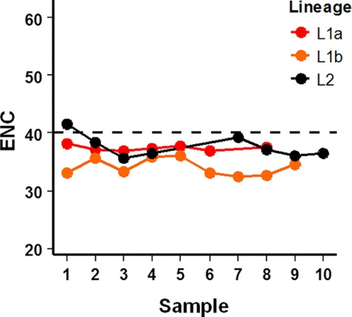 Effective number of codons utilized by each HCV (sub-)lineage overtime.Values less than the threshold of 40 (dashed line) are considered as biased utilization of the available redundancy within the genetic code.