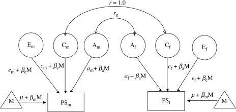 Sex-limited additive genetic (A), shared environment (C) and non-shared environment and measurement error (E) effects on the scores of the prosocial scale of opposite-sex DZ twin pairs. Subscripts m and f refer to male and female, respectively. rg, genetic correlations; PS, prosocial scale; M, moderator (age); β, regression coefficient for M.