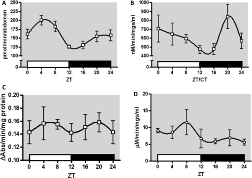 Diurnal variation in enzyme activity in LD conditions.(A) The diurnal profile of ECOD activity showed a significant difference (p = 0.013) in mean activity between the peak at ZT4 and the minimum at ZT12, a difference of 75 pmol 7HC/min/abdomen. (B) The diurnal profile of UGT activity showed a significant difference in means (p = 0.03). A peak in this activity was observed at ZT20 which was significantly different that at ZT16 (p = 0.05), a nearly two-fold difference of 366 nM 4MU/min/mg/ml. (C) The diurnal profile of esterase activity did not show any significant difference between means. (D) The diurnal profile of GST activity did not reveal any significant differences between means. All data are means of 3 biological replicates, with error bars representing SEM.