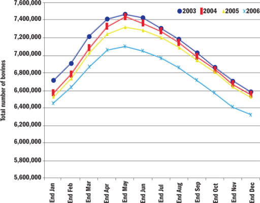 Annual fluctuations in the total number of cattle in the Irish national cattle herd, by year, between 2003 and 2006.
