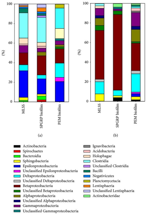 Bacterial community analysis of the MFC A/O reactor. The ratio of identified bacterial species to all bacteria cloned on the 114th day (class level): (a) anoxic reactor; (b) aerobic reactor.