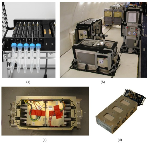 Technology for cell culture experiments in different microgravity research platforms. (a) Fast-rotating two-dimensional (2D) clinostat manufactured by the German Aerospace Center (DLR, Cologne, Germany) was used to provide simulated microgravity. Under the chosen experimental conditions (60 rpm, 4 mm pipette diameter) a maximal residual acceleration of 4 × 10−3 g is achieved at the outer radius of the pipette and decreases towards the center. (b) Experimental hardware structure which consists of an incubator rack to store the cell containers temporarily before the experiment at 37°C (left), an experimental rack in which all active aggregates are accommodated and where the living cells are handled during altered gravity (right) and a cooling rack to temporarily store all cell containers after the injection of the stop/fixation liquid at 4°C until landing (front). (c) Payload of TEXUS-49 sounding rocket tempered and vacuum-resistant container with experiment syringe systems. (d) Plunger unit EUE for SIMBOX (Science in Microgravity Box) incubator system, support structure (housing made of PEEK), which includes three culture chambers and six supply units, two for each culture compartment. Each culture chamber represents an independent loop. The culture chambers filled with medium are closed on the top of the housing by means of polycarbonate specimen window slides, where the adherent cells are attached beforehand. The housing is tightened by silicon sealing and covered by an aluminum plate (cover) fixed with screws.