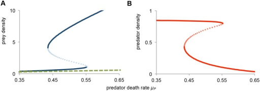 Bistability in the absence of disease.Bifurcation diagram as a function of predator death rate μP. (a) Equilibrium prey density, juveniles JS in solid line (blue), and adults A in dashed line (green), and (b) Equilibrium predator density P (red). The equilibrium curves exhibit a so-called catastrophe fold, with a bistable region for 0.435 < μP < 0.553. The unstable (saddle node) state is indicated with the dotted lines. Model parameters are b = 1, c = 1, d = 1, n = 1, φ = 1, μJ = 0.05, μA = 0.1, and μP variable.