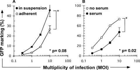 (A) Lentiviral transduction of non-adherent murine mesenchymal stem cells (MSC). MSC were exposed to VSV-G pseudotyped green fluorescent protein (GFP) expressing lentivirus for 1 hr at the indicated multiplicities of infection (MOI), alternatively in adherence after plating 16–24 hrs earlier (open symbols), or in suspension (closed symbols). (B) Gene transfer to mMSC is improved under serum free conditions. MSC were thawed from liquid nitrogen, washed twice in phosphate buffered saline (PBS), resuspended in media, and immediately exposed to lentivector at the indicated MOI. All transductions were performed over 1 hr in 1ml final volume, in the presence of protamine sulphate at 4 μg/ml. At the end of transduction cells were washed twice in PBS and plated in Iscoves based MSC expansion medium, as described by Peister [7]. Retrovirus vector was produced as previously described [6]. For transduction in suspension, cells were trypsinized from log-phase expansion culture, or thawed from cryopreservation (5% dimethyl sulfoxide [DMSO]) in liquid nitrogen and washed in PBS. Averages from multiple repeat determinations are shown. Data were analysed using the paired two-tailed Student's t-test. P-values of less than 0.05 were considered significant.