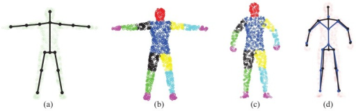 "(a) The ""T-pose"" template model used for the SCAPE dataset; (b) The labeled template; (c) The labeled initial pose; (d) The learned subject-specific articulated model for SCAPE data (the estimated skeleton in black and the ground-truth one in blue)."