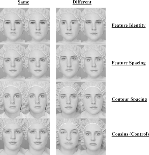 Examples for same and different stimuli for each condition of the Jane Faces task.
