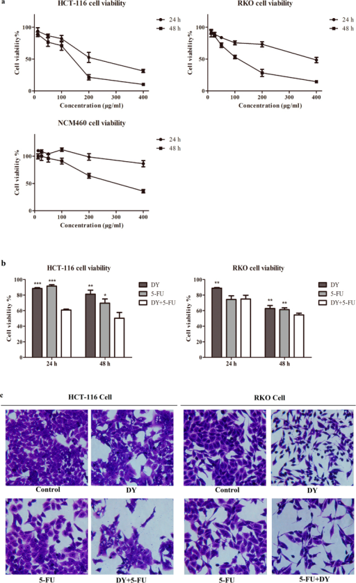 DY exhibited anti-proliferation effects against CRC cells and sensitized them to the cytotoxicity of 5-FU.(a) Cells were treated with DY extracts (12.5–400 μg/ml) for 24 or 48 h, CCK8 assay was then performed to evaluate the cell viability. (b) Cells were separately incubated with DY (100 μg/ml) or 5-FU (20 μM, HCT-116; 5 μM, RKO) and their combination for 24 or 48 h and cell viabilities were assessed by CCK8 assay. *P < 0.05, **P < 0.01, ***P < 0.001, compared with (DY + 5-FU) group. Results are expressed as mean ± SD (n = 3). (c) Cellular morphologies of CRC cells with 48 h treatments as described in (b) were observed under inverted microscope (400×).