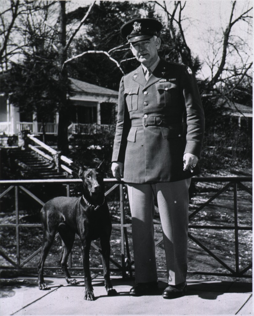 <p>Full face, wearing the uniform of Medical Corps' Colonel, standing with a dog.</p>