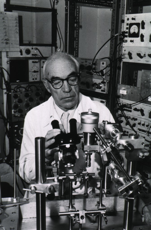 <p>Head and shoulders, full face, seated behind microscope in laboratory.</p>
