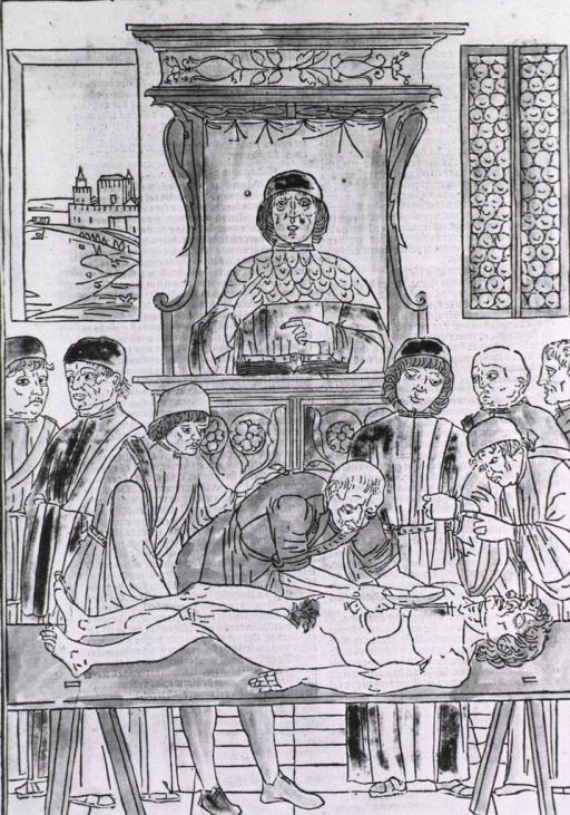 <p>An instructor stands at a lectern on which is an open book; below him (in the foreground) are several students, one of them prepares to dissect a male body lying on a table.</p>