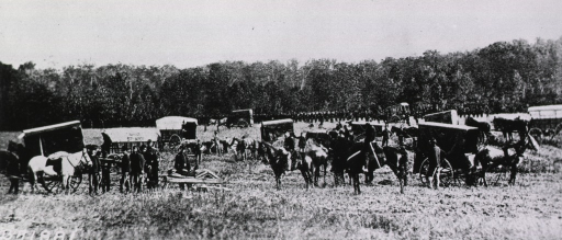<p>Horse-drawn carrriages are positioned on a grassy expanse.  Servicemen stand or sit on horses.  A grove of trees is seen in the distance.</p>