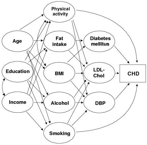 A possible causal diagram based on established relation open i a possible causal diagram based on established relationships for estimating the incidence of coronary heart disease ccuart Choice Image