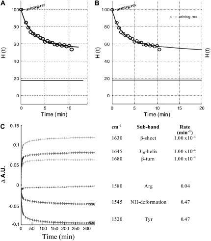 The kinetics of exchange for AR is summarized in three plots. (A) Initial times of exchange. (B) Percent of unexchanged protein versus time. AR was observed to exchange 55% after 80 min. A straight line shown at the bottom of each multiexponential decay plot (A and B) is the residual of the fit with the resulting standard deviation 0.083. (C) Evolution of the absorbance at selected wavenumbers versus time, which includes a summary of the kinetic components assigned to Tyr, Arg, and the different structural motifs.
