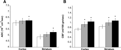 Effect of saline/insulin infusion on ADC values and CBF in DKA rats. Rats were infused with saline and insulin intravenously via cannulated femoral vein, as described in research design and methods. A: ADC values of DKA rat cortex and striatum were determined by diffusion-weighted imaging before, as well as 1 and 2 h after, the start saline/insulin fusion. Values are means ± SE, n = 6. *Significantly different from preinfusion ADC values by paired t test. P < 0.05 for both cortex and striatum at 2 h. One-hour values are not significantly different from pretreatment values. B: CBF values of DKA rat cortex and striatum were determined by perfusion-weighted imaging before, as well as 1 and 2 h after, the start of saline/insulin infusion. Values are means ± SE, n = 6. *Significantly different from preinfusion CBF values by paired t test. P < 0.01 and P < 0.001 for cortex at 1 and 2 h, respectively; P < 0.05 and P < 0.01 for striatum at 1 and 2 h, respectively. □, before saline/insulin; , 1 hr after saline/insulin; ▪, 2 hr after sasline/insulin.