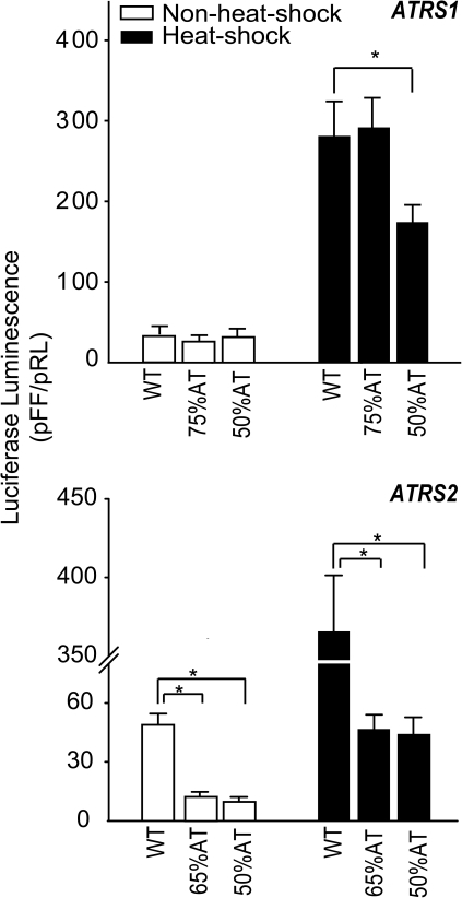 "Transient luciferase luminescence driven by constructs carrying hsp70 promoter with altered A+T content.ATRS1 or ATRS2 were replaced with random sequences of the same size but different A+T content; ""WT"": construct with wild-type promoter of Lsahsp70 gene. Methods are as in Figure 2. Luminescence is expressed as in Figure 2. Bars indicate ± one SD. Asterisk (*) indicates a difference significant at the 0.05 level."