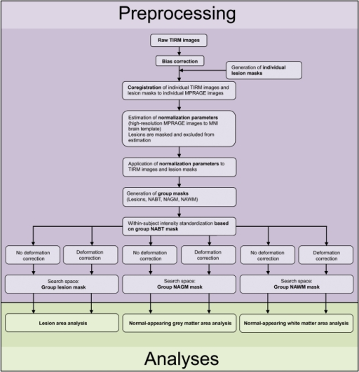 Overview of data processing.For details please see text and Material S1. MNI, Montreal Neurological Institute; NAGM, normal­appearing grey matter; NAWM, normal-appearing white matter; NABT, normal-appearing brain tissue.