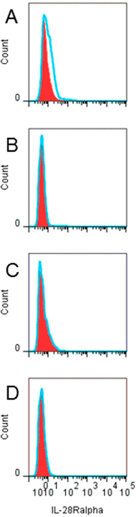 CD4+ T-cells do not express IL-28Ralpha.Resting or activated cord blood mononuclear cells were analyzed for IL-28Ralpha expression using FACS. IL-28Ralpha expression (histograms) on pDC (A) or CD4+ T-cells obtained directly upon isolation (B) or after 24 h incubation with anti-CD3 (C) or recombinant human IFN-alpha (D). Filled red areas represent isotype-PE control and blue lines represent IL-28Ralpha-PE.