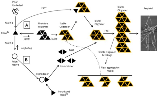 Propagation of aggregation and a proposed mechanism for